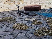 Hady na námestí El Fna v Marrakéši